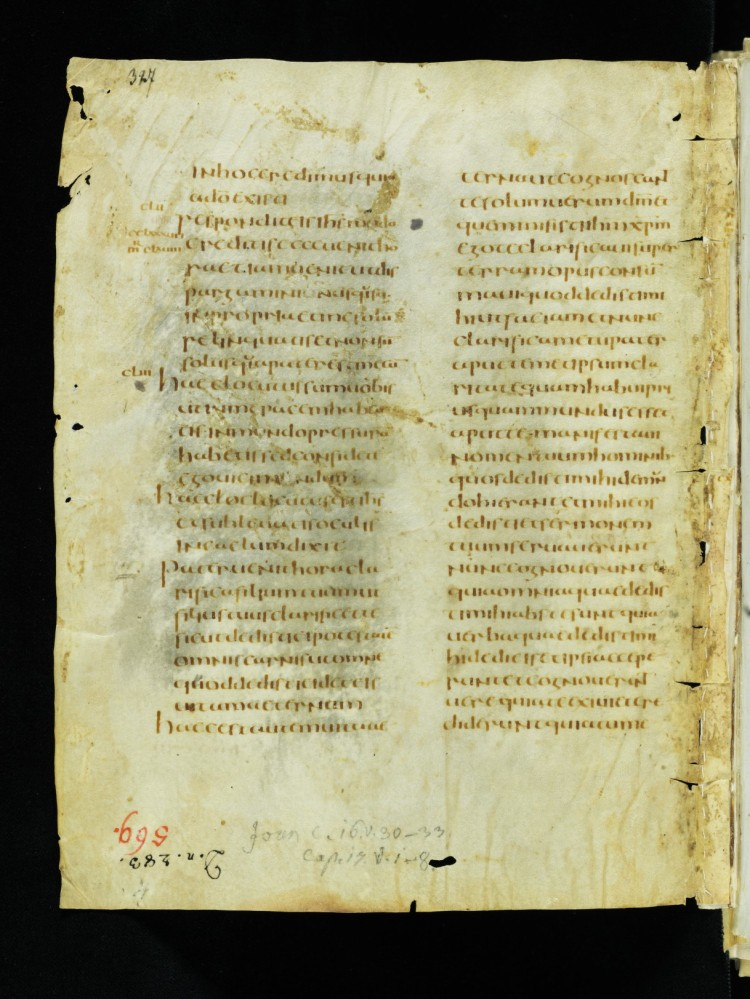 e-codices_csg-1395_327_medium.jpg